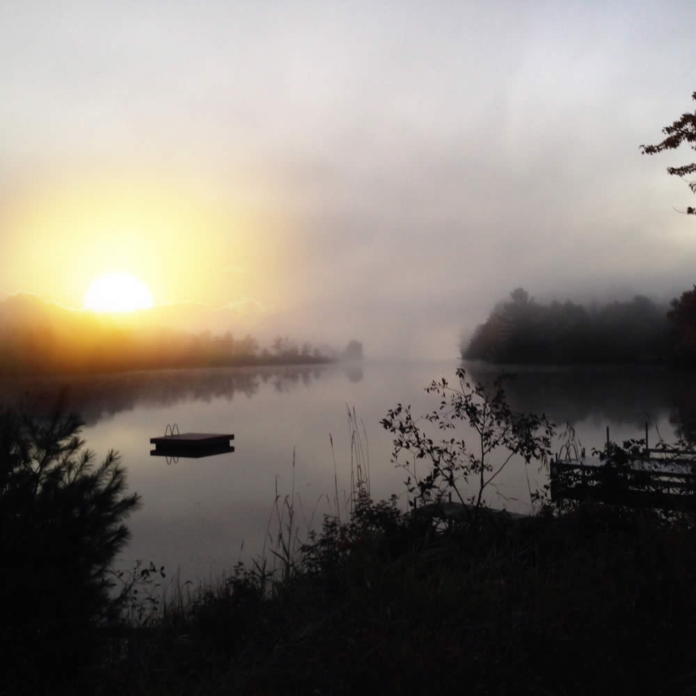 Misty Pond in the early morning