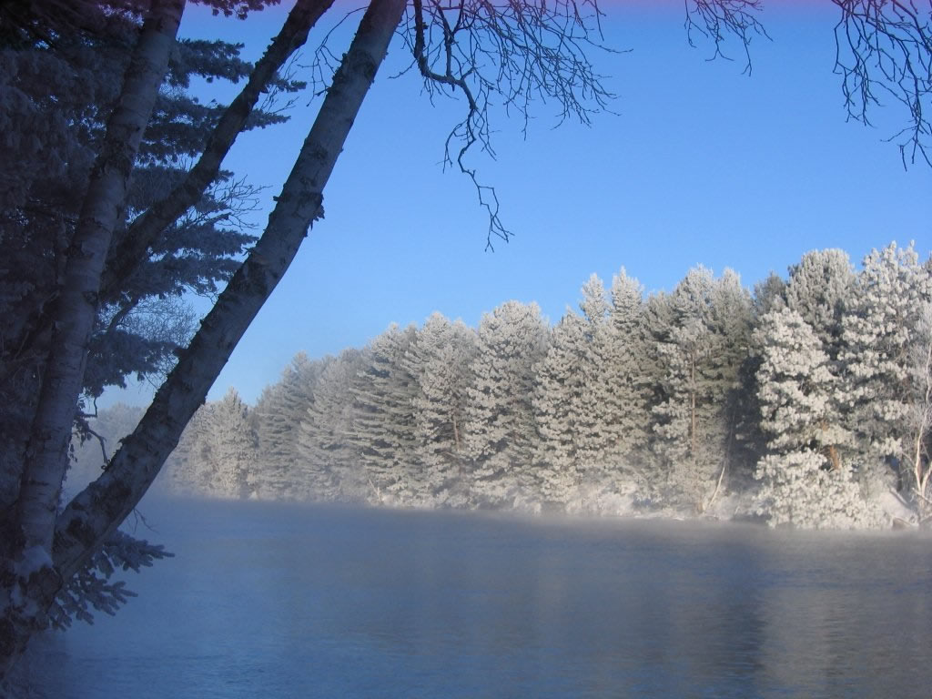 Frosty lake with snow covered trees